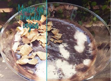 mousse-au-chocolat-vegan-fait-maison