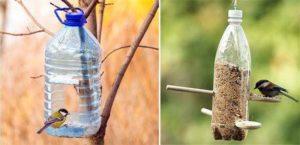 bouteille-distribution-graines